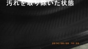 taiyayogore1